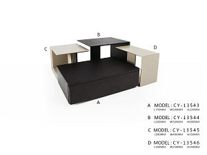 Coffee Table - One Model B Only