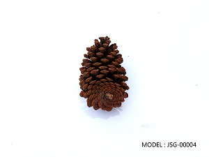 Decorative Pine Cone